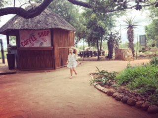 run wild south africa